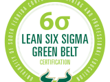 Certified Six Sigma Green Belt (Exam Cost Included)