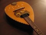 The World of Mandolin