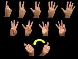 Sign Language 1