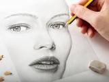 Drawing - Beginner Class