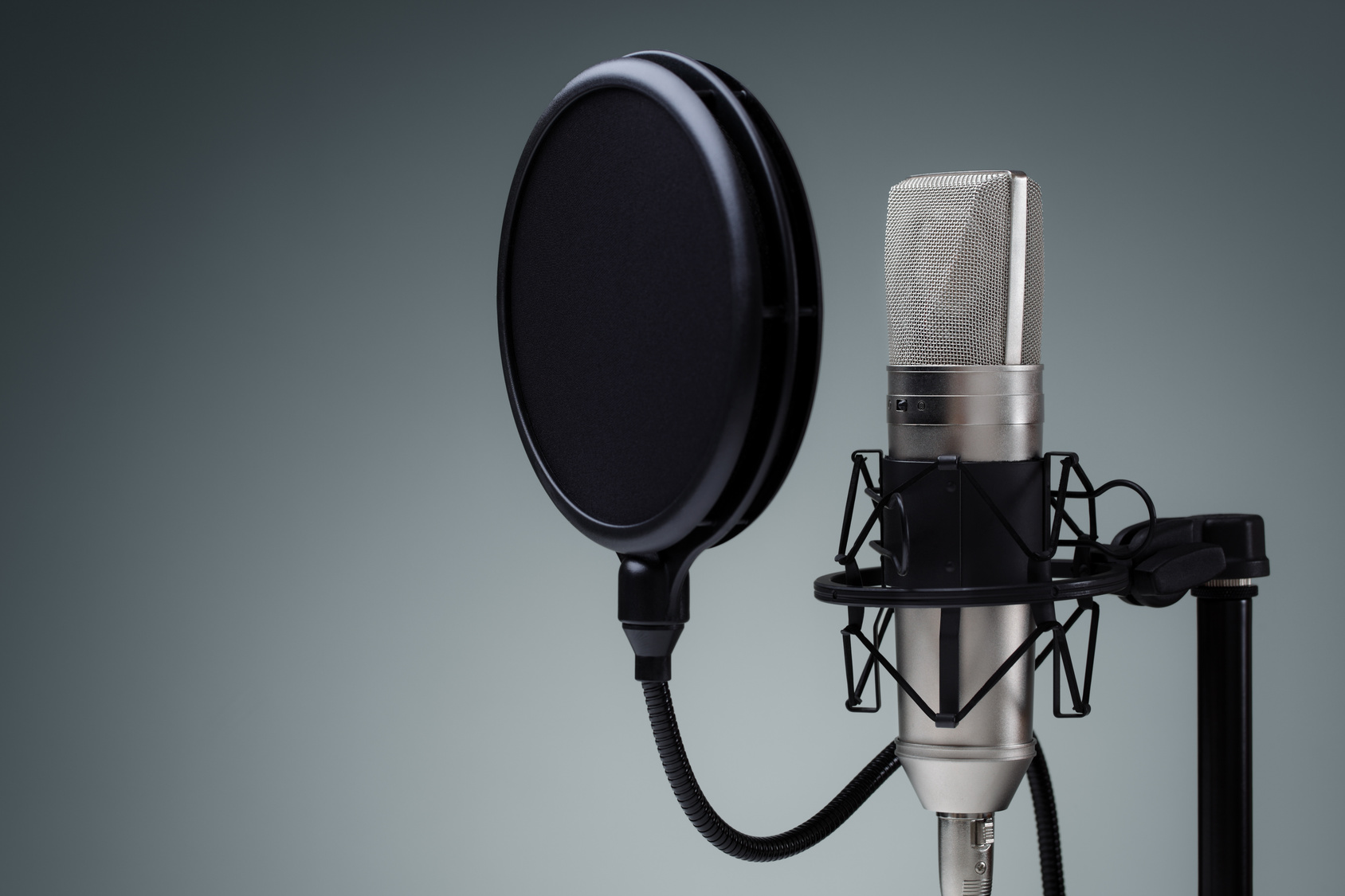 An Introduction to Voiceovers, One-on-One