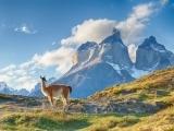 Armchair Traveler: Patagonia