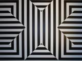 Optical Illusions & Magic Tricks