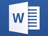 NCCP350M - Microsoft Word Level I