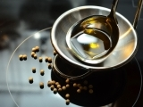Food Fats and Oils as Healthy Choices