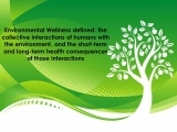 Certificate in Wellness and the Environment