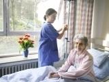 Certified Nurse Aide (CNA)