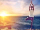 200-Hour Yoga Teacher/Coaching Yoga, Coaching Life Foundation Certification Program