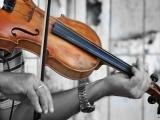 Fiddle for Intermediates