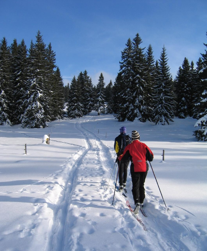 Original source: http://icoachcycling.files.wordpress.com/2012/01/cross-country-ski-canada.jpg