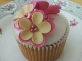 Cupcake Decorating *1