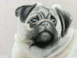 ARTastic! For Older Kids (Ages 9+) Tuesdays
