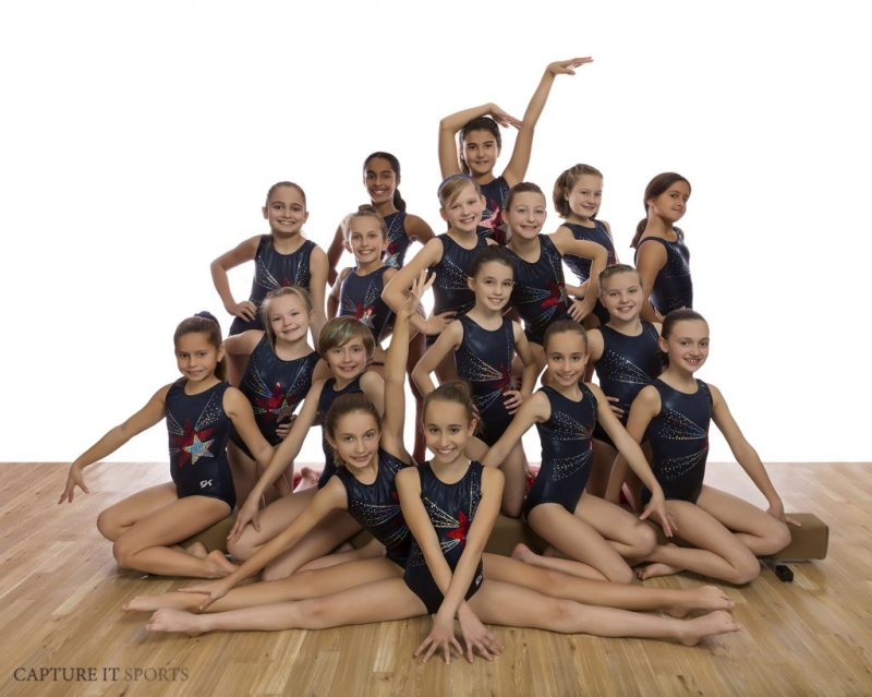 Original source: http://gu-nj.com/wp-content/uploads/2019/02/gymnastics-unlimited-galaxy-competition-team-1024x819.jpg