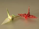 Origami for the Beginner - Plymouth