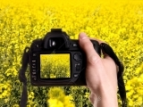 Digital Photography 101 (Session 2)
