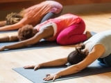 Yoga for the Absolute Beginner
