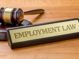 Employment Law Certificate 3/9