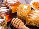 700S20 The Secret Life of Honey