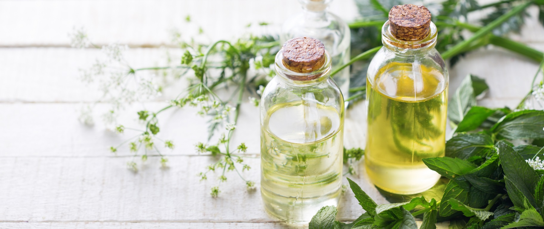 Making Health Promoting Spa Products with Therapeutic Oils