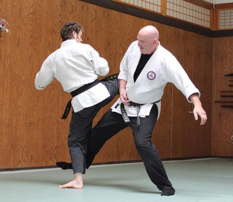 Original source: http://www.modernwarriorartsacademy.com/wp-content/uploads/2014/02/bear-roberts-seibukan-jujutsu.jpg