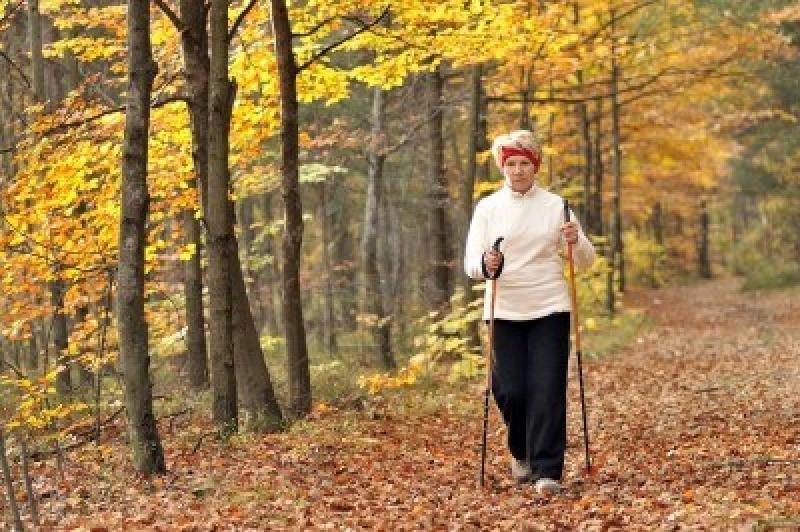 Original source: http://www.petesteel.com/wp-content/uploads/2013/11/4619458-senior-woman-train-nordic-walking.jpg