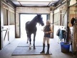 Horse Handling 101