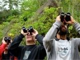 Original source: http://www.thewanderingstar.com/wp-content/uploads/2015/04/birdwatchers1.jpg
