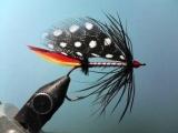Fly Fishing Basics - R7 Winsted