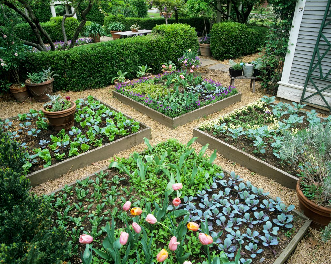 Bring Happy Faces To Your Garden Spaces