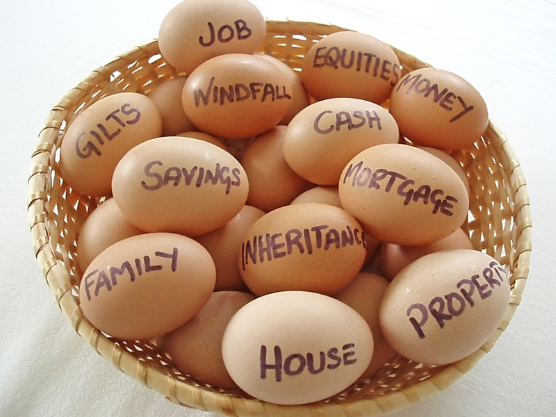 Original source: http://lwmwealth.com/blog/wp-content/uploads/2013/06/Eggs-in-basket-Labeled.jpg