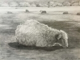 Drawing with Graphite (ONLINE) DR 610EG_ON