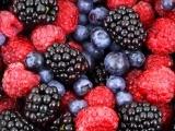 Growing Great Berries