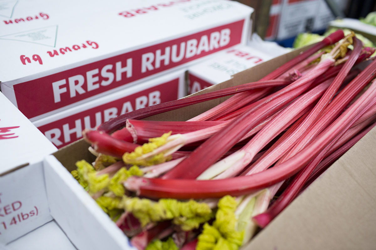 Preserving Rhubarb Workshop