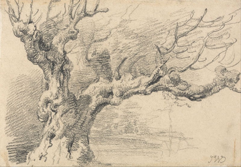 Original source: https://upload.wikimedia.org/wikipedia/commons/thumb/6/67/James_Ward_-_An_Old_Oak_Tree_-_Google_Art_Project.jpg/1280px-James_Ward_-_An_Old_Oak_Tree_-_Google_Art_Project.jpg