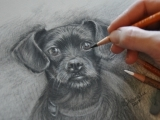 Charcoal Drawing with Shawnalee - Plymouth