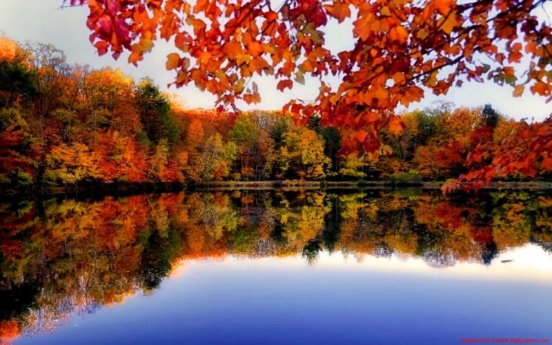 Original source: http://img.wallpaperfolder.com/f/44586B3DEDFE/1280x800-autumn-forest-river-side.jpg