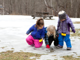 Preschool February Vacation Camp
