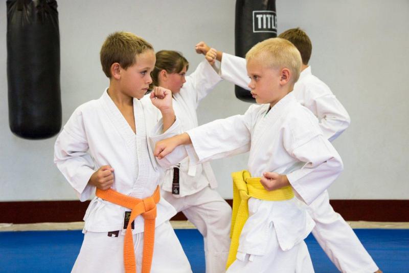 Original source: http://2.bp.blogspot.com/-EpbZgp5Yjg8/URlD1wEZJvI/AAAAAAAAAIs/jloOoDVW5EY/s1600/kids+karate.png