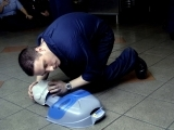 Adult/Pediatric First Aid/CPR/AED