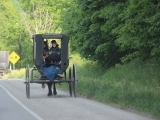 Amish Brown Bag Tour - Featuring an Amish Wedding Feast - Mail-In Registration Only*