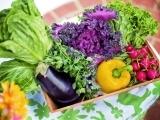 Gardening: Grow Your Own Organic Garden INTEREST LIST