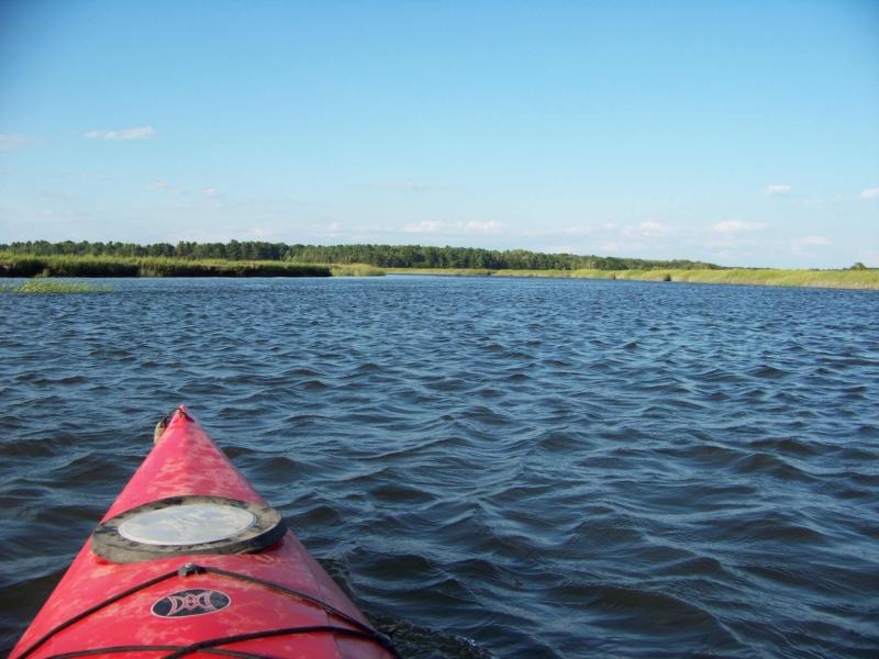 Image uploaded by Maine Audubon