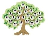 Original source: http://www.bkreader.com/wp-content/uploads/2016/04/sara-cornelius-family-tree.jpg