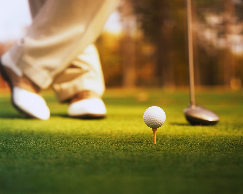 Original source: http://www.elkhornvalleygolfclub.com/_include/img/slider-images/golf2.jpg