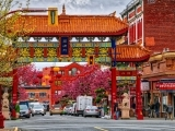 Dim Sum in Chinatown & The Museum of Fine Arts on the Downeaster
