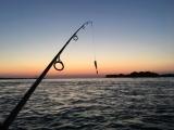 Fishing Talk with Captain Scott