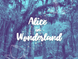 Alice in Wonderland – 5th-8th Spring Play