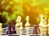 SAGE Chess: A Game for a Lifetime