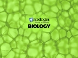21R. BIOLOGY (Option 5) Rec/Fowler $638*