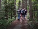 Walking in Wonder Nature Hikes